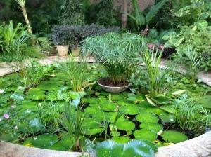 Amethyst round pond